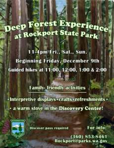 deep-forest-experience-flyer-page-001